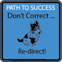 BLUE - Don't Correct ...Re-Direct! (HI)