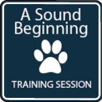 Walking the Reactive Dog (Virtual Online Training)
